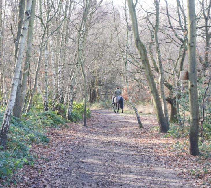 wimbledon-walk
