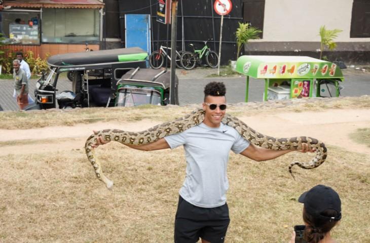 Galle, Sri Lanka snake